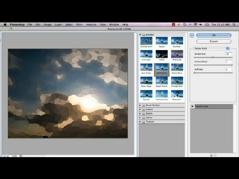 How to Make Your Picture an Oil Painting in CS5 : Advanced Photoshop CS5