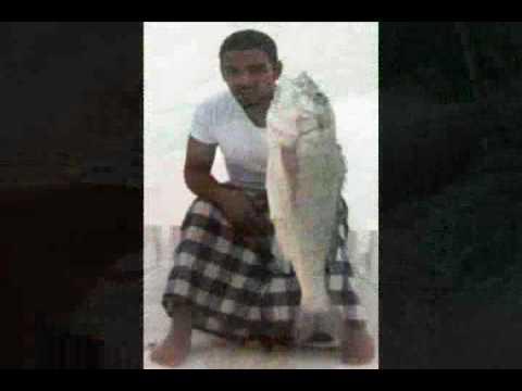 silver Seabream 11 4 2009 fishing in kuwait