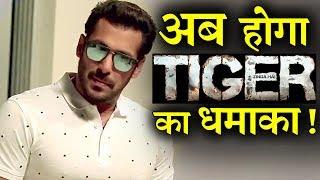 Forget Tubelight Salman will bang with Tiger Zinda hai