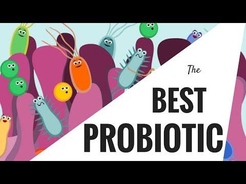Best Probiotic: Meet the