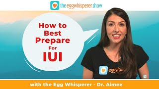 How to Best Prepare for IUI