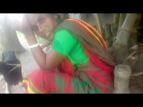 Xxx Mp4 ভাবির বাল পেকে ঝুনঝুন Bhabi Bal Paka গ্রামের বৌদি আর দেবর ভিডিওটা মিস করবেন না 3gp Sex