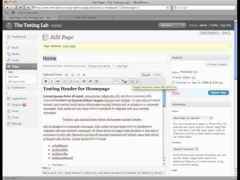 Editing Pages 6 - Spell Checker and Full Screen Mode