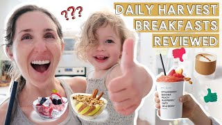 DAILY HARVEST BREAKFASTS REVIEWED: Worth it? Coffee, Oat Bowls, + Smoothies!