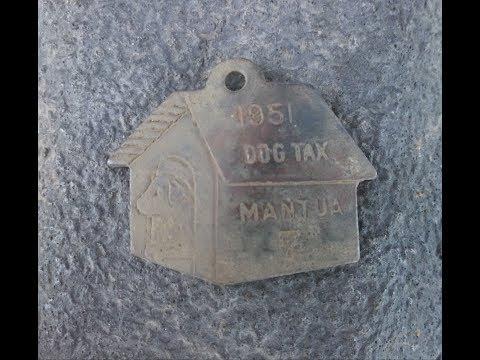 Metal Detecting in Utah, Local Dog Tax Found.