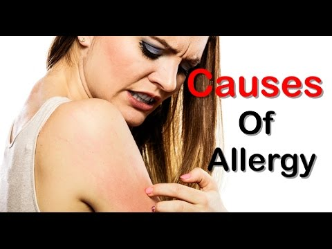 10 Most Common Allergy Triggers And Causes Of The Allergy