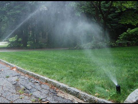 Live on a lake? Get free irrigation water!
