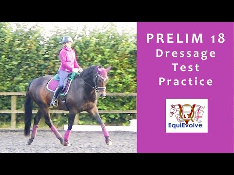 Prelim 18 Dressage Test Learning Tool