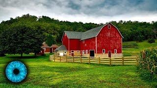 Bauernhöfe ohne Tiere - Vegane Landwirtschaft der Zukunft? - Clixoom Science & Fiction