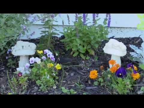 Make A Fairy garden! Tooth Fairy and Mushrooms! ComposiMold Mould making and Concrete Casting