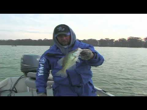 Crappie Spider Rigging on Reelfoot 2006