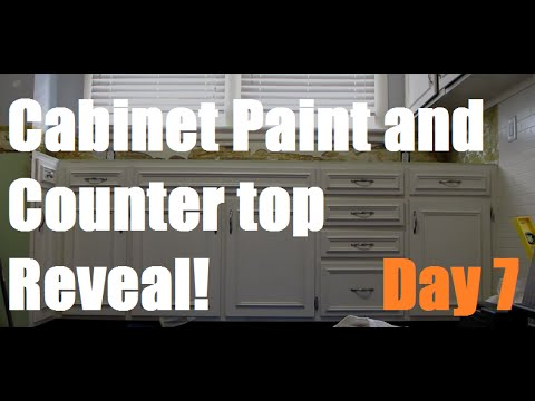 Painting Kitchen Cabinets and Countertop Reveal! - Day 7   DIY Distress