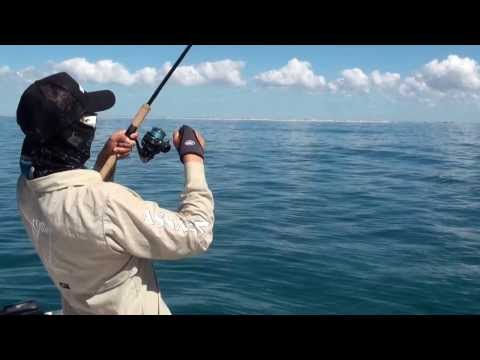Queen Fish Chaos BD Lodge Mozambique - The Raw Files