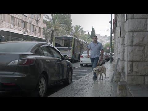 Israeli Guide Dog Center for the Blind