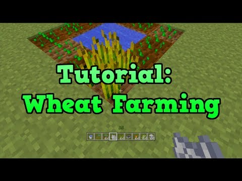 Minecraft PS3 + PS4 - Wheat Farm Tutorial (Farming Tutorial 3/10)
