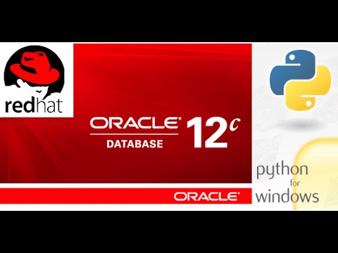 How to connect to Oracle database using Python in Windows.
