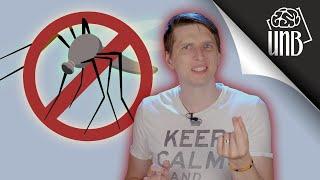 Czy powinniśmy zabić wszystkie komary?