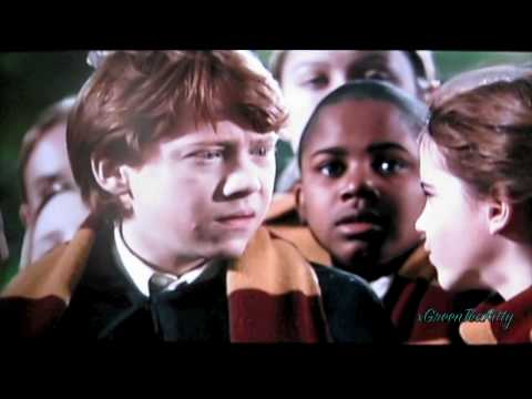 Hermione//Harry//Draco-My First Love Triangle!