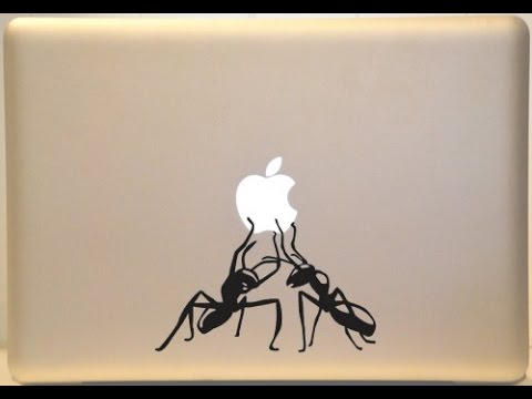 How to save your laptop/macbook from ANTS
