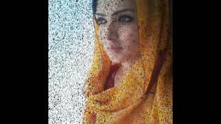 sara chaudry wedding,mehndi pictures