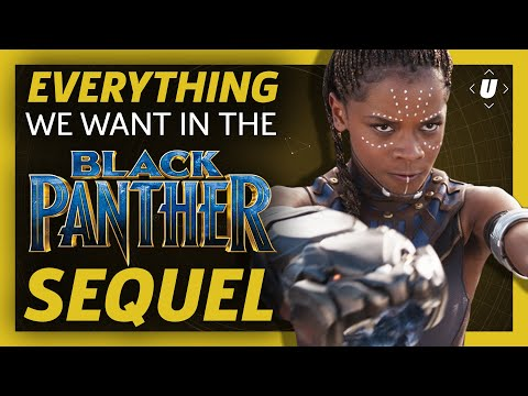 Everything A Black Panther Sequel Needs