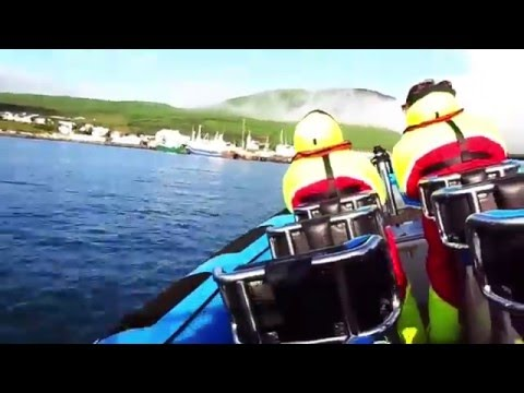 Whale Watching From Rib Boat in Husavik Iceland
