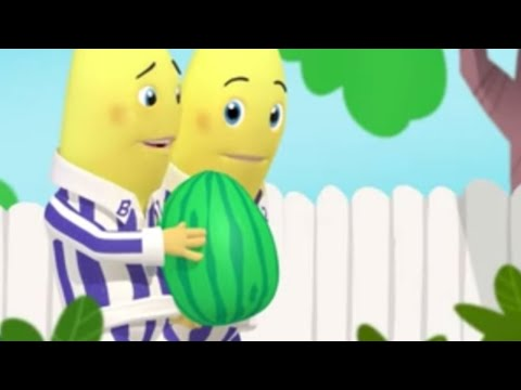 The Ping Pong Hiccups - Animated Episode - Bananas in Pyjamas Official