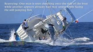 Marlin Sinks Fishing Boat. Vessel Capsizes After Hooking Huge Fish [Reuploaded]