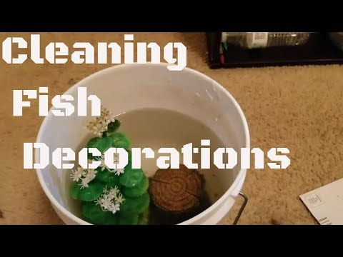 HOW TO CLEAN FISH TANK DECORATIONS 2017