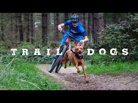 Trail Dogs