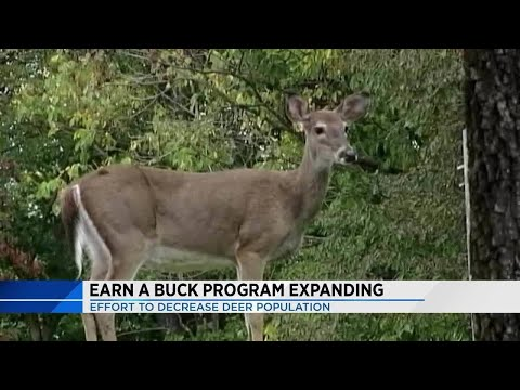 Hunting law change expected to lower Virginia deer population