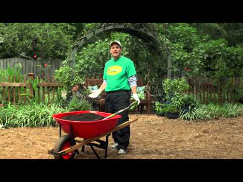 How-to Plant a New Tall Fescue Lawn from Grass Seed