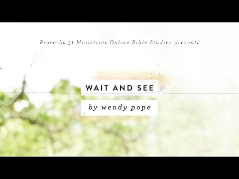 OBS: Wait and See Conference Call Series
