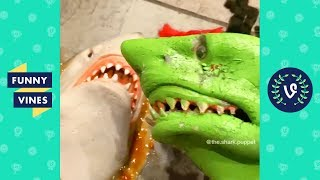 TRY NOT TO LAUGH - Funny Shark Puppet Instagram Videos!