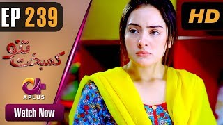 Drama | Kambakht Tanno - Episode 239 | Aplus ᴴᴰ Dramas | Tanvir Jamal, Sadaf Ashaan
