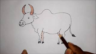 How To Draw Pongal Festival Drawing Easy Drawing Master Visuraam