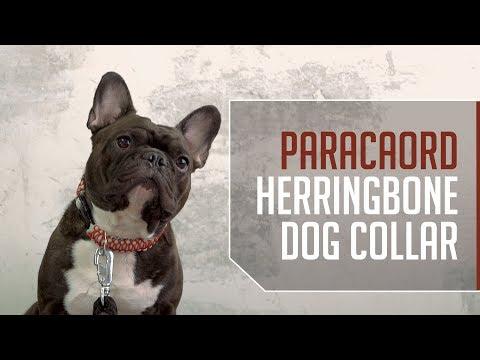 Paracord Herringbone Dog Collar