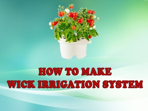 How to Make a Simple Wick Irrigation System..!