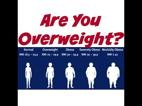 Are You Overweight?