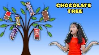 Pari Ka Chocolate Tree | Exciting Story | Pari's Lifestyle