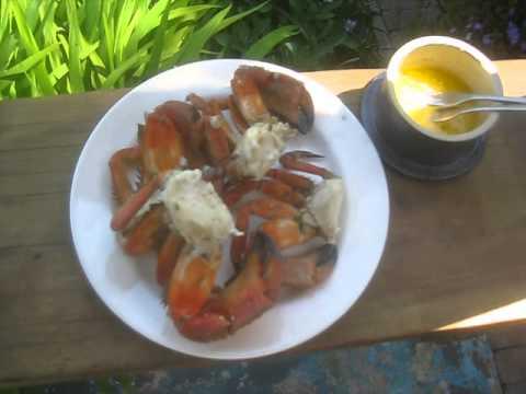 Fresh Red Rock Crab /  Canada