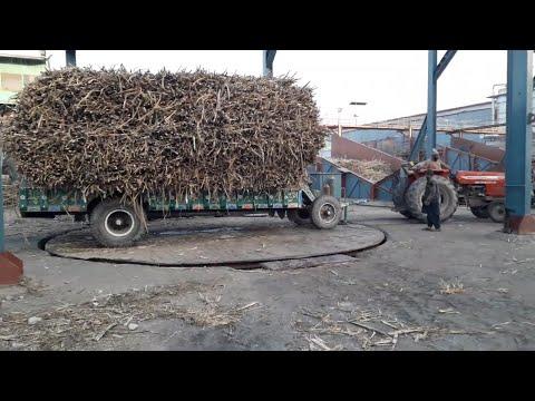 Massey 385 on Circular Hydraulic  Jack with Heavy Sugarcane Loaded Trolley