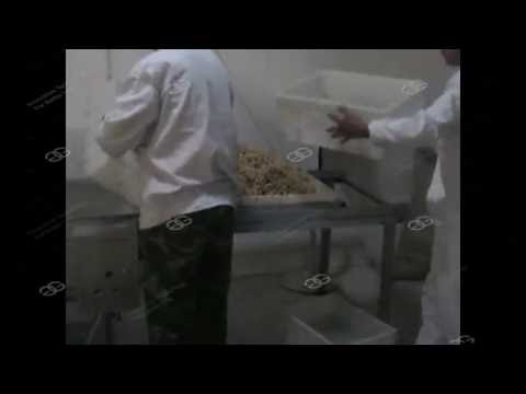 Commercial Peanut Brittle Production Line|Peanut Chikki Making Machine