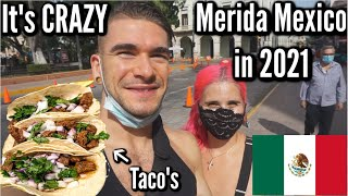 What is Merida Mexico like in 2021? | Safety, Mexican Street Taco's \u0026 Street Markets! Joel Hansen