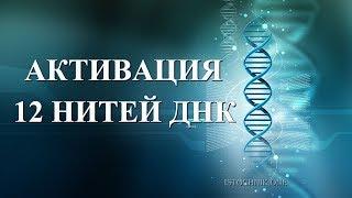 Download Активация 12 нитей ДНК в Вознесении Video
