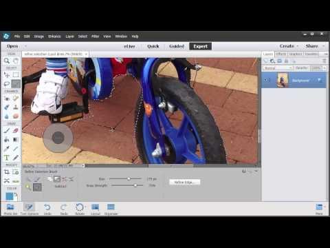 Refine Selection Brush Tool in Photoshop Elements