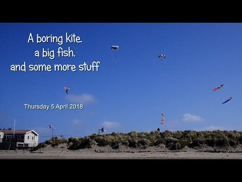 A boring kite, a big fish, and some more stuff