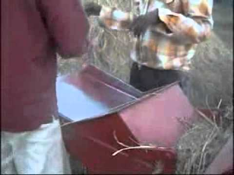 how its made paddy Farming