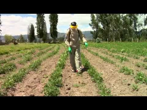 Pesticidewise: spot spraying herbicides
