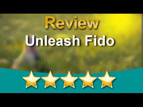 Professional Dog Trainer Puppy Training Class Atlantic Beach, Florida  | Unleash Fido